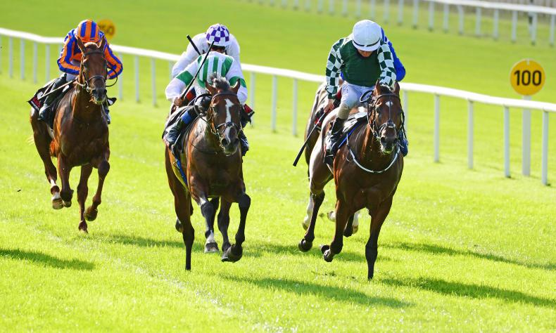 RACING CENTRAL: The Phoenix of the millennium
