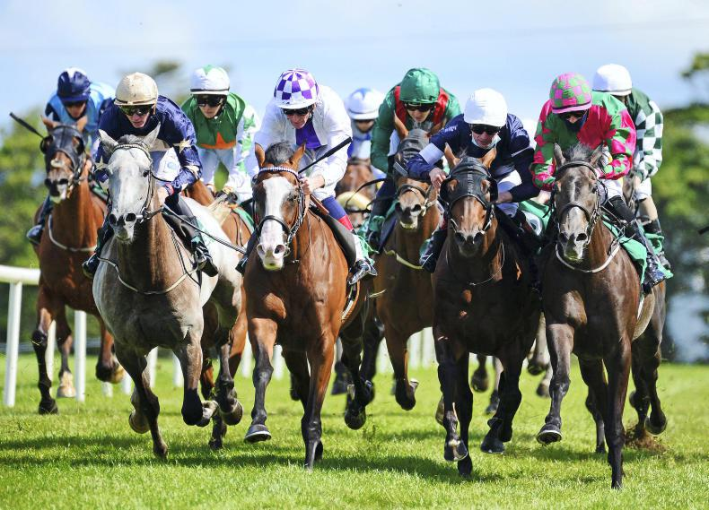 SLIGO FRIDAY: Ambitious Approach gets his turn