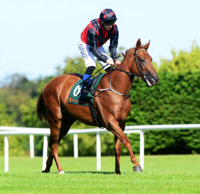 CORK SATURDAY PREVIEW: Pronouncement hopeful for listed victory