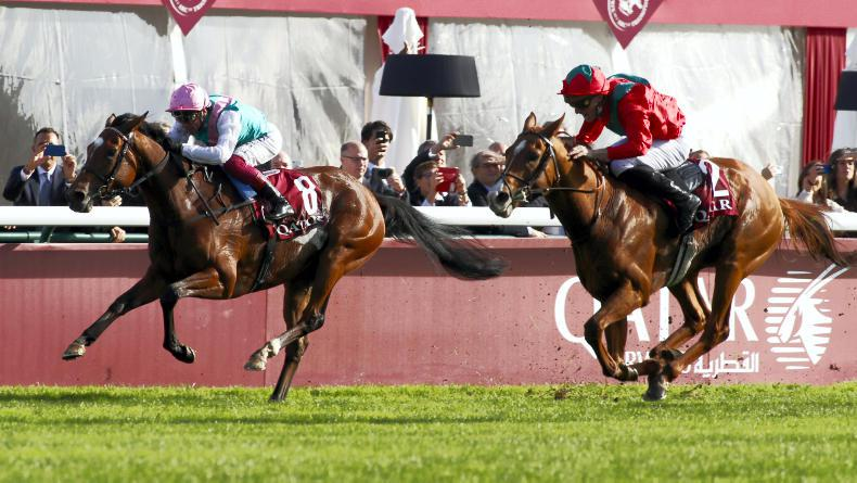 Enable to miss York en route to historic Arc bid