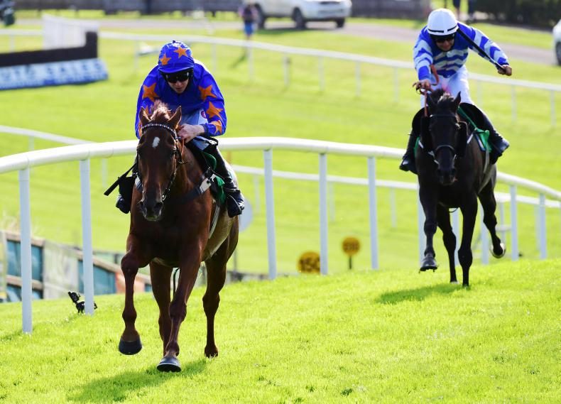 DOWNPATRICK SUNDAY: Trigger fires off win number five