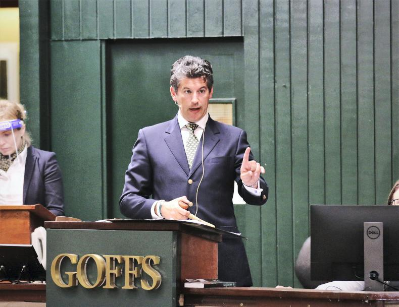 Relief evident as industry gets back to business at Goffs