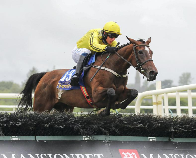 TIPPERARY MONDAY: Evermore looks the Finest prospect