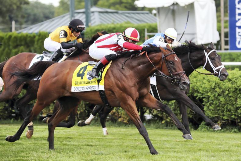 BREEDING INSIGHTS: Kingman's Derby winner at Saratoga