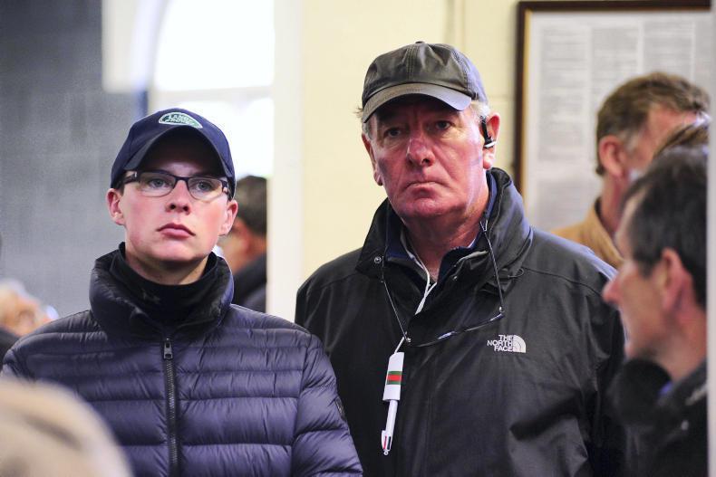 BREEDING INSIGHTS: Heider's latest Irish stakes success