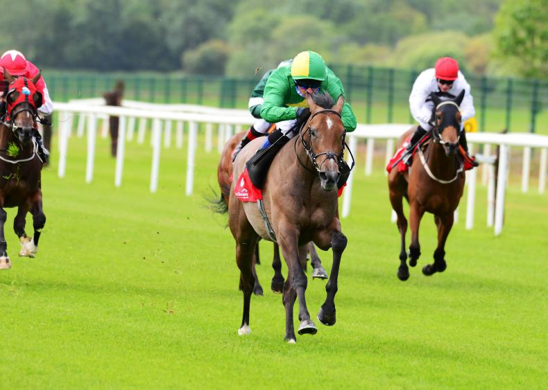 YORK PREVIEW: RONAN GROOME: Underrated Condon and Amulet out for further success