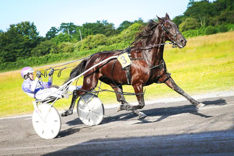 HARNESS RACING: Old stars bid farewell
