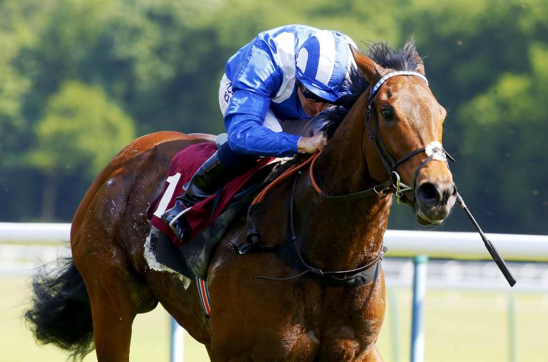 YORK : Fastest horse in the world - Battaash faces seven rivals