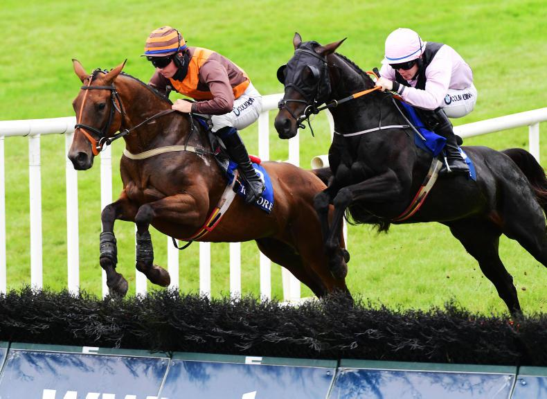 TRAMORE SUNDAY: Trees Valley completes good days for Burke