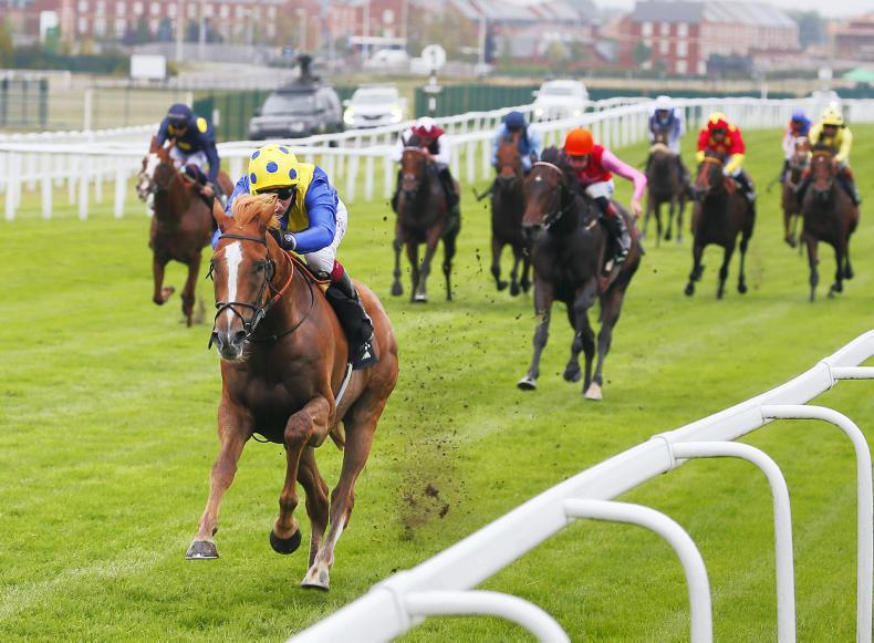 Poignant win for Stoute team with Dream Of Dreams