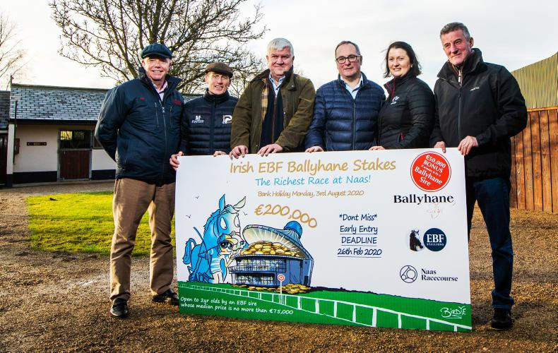 Owners and trainers hoping for big payday at Naas on Sunday