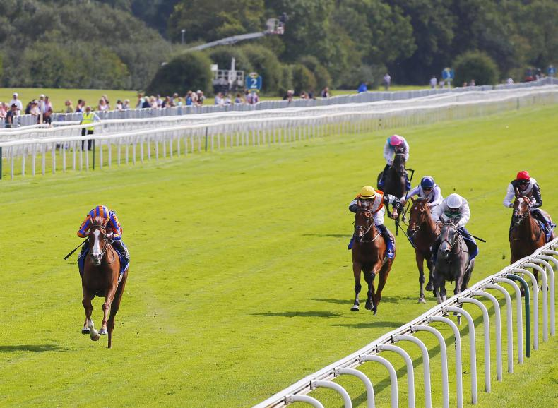 YORK THURSDAY: Love lights up again to set up Arc date in Paris