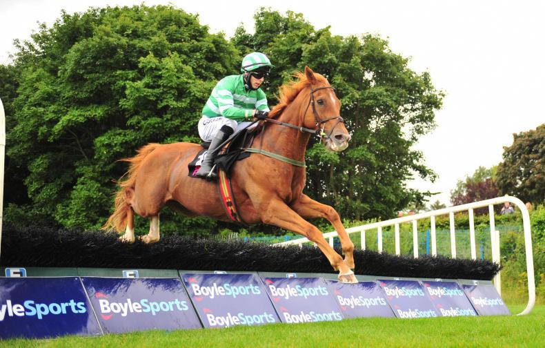SLIGO WEDNESDAY: Morris and Enright join forces for a double