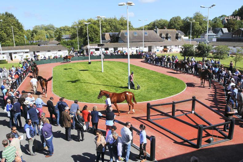 Arqana amends select yearling sale dates