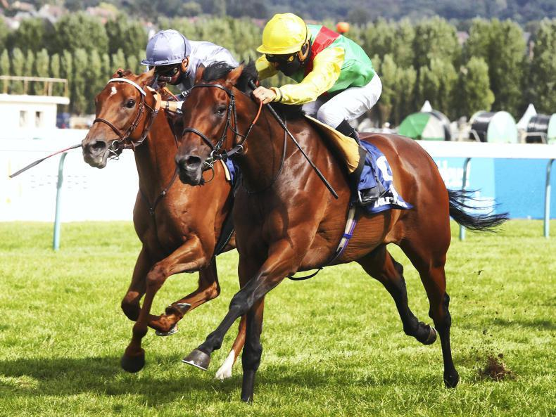 BREEDING INSIGHTS: Wootton Bassett repays Coolmore's investment