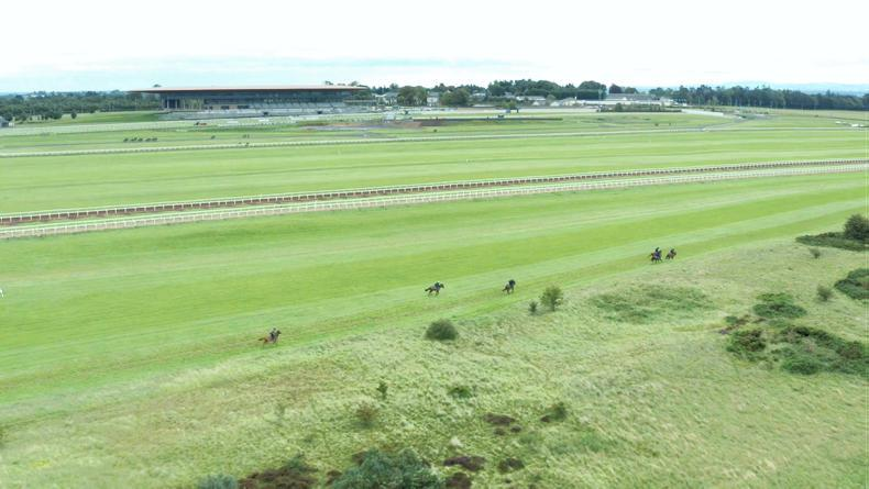 CURRAGH: Why Ireland's HQ leaves them all green with envy