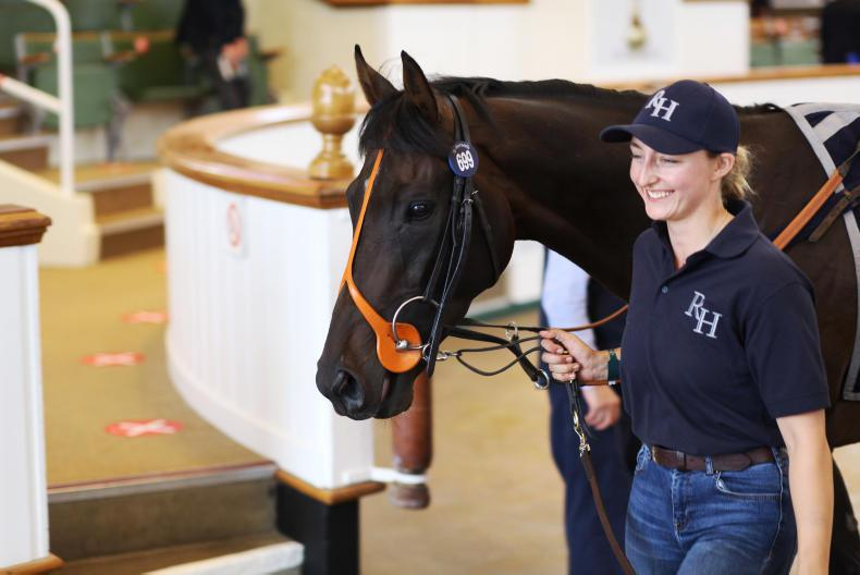TATTERSALLS AUGUST SALE: Voute's spending spree nabs top three lots