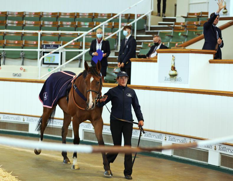 TATTERSALLS AUGUST SALE: Middle East purchases feature prominently