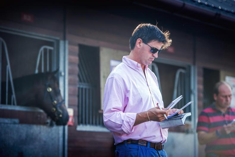 BREEDING INSIGHTS: Timely catalogue updates for upcoming sales