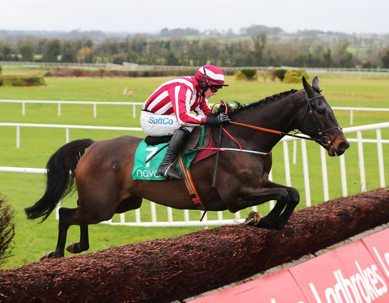 WEXFORD PREVIEW: Paloma Blue the one to beat