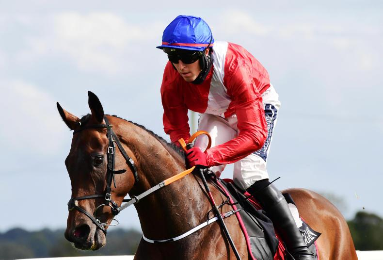 MARGIE McLOONE: Malone Road heads northern-bred success