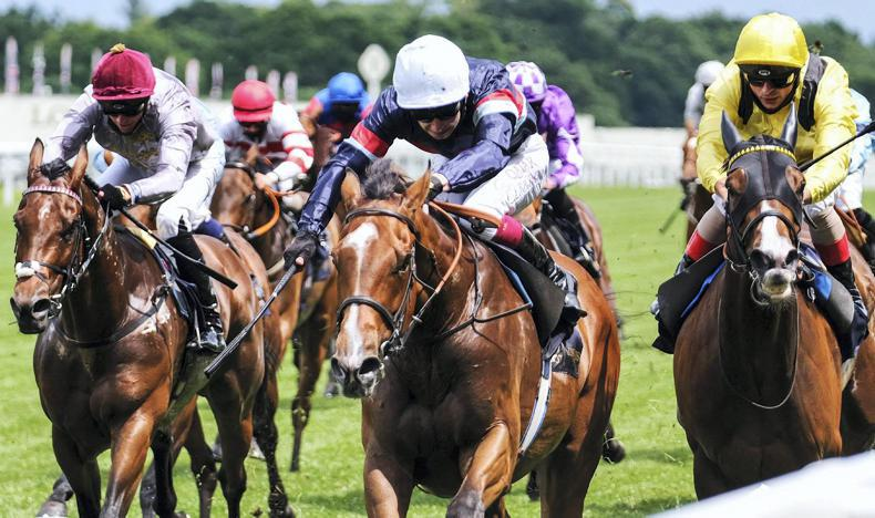 BRITISH PREVIEW: Busker an attractive betting proposition