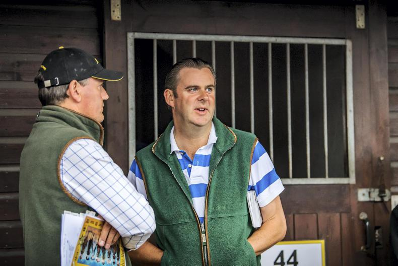 NEWS: Moment of truth arrives for yearling sales