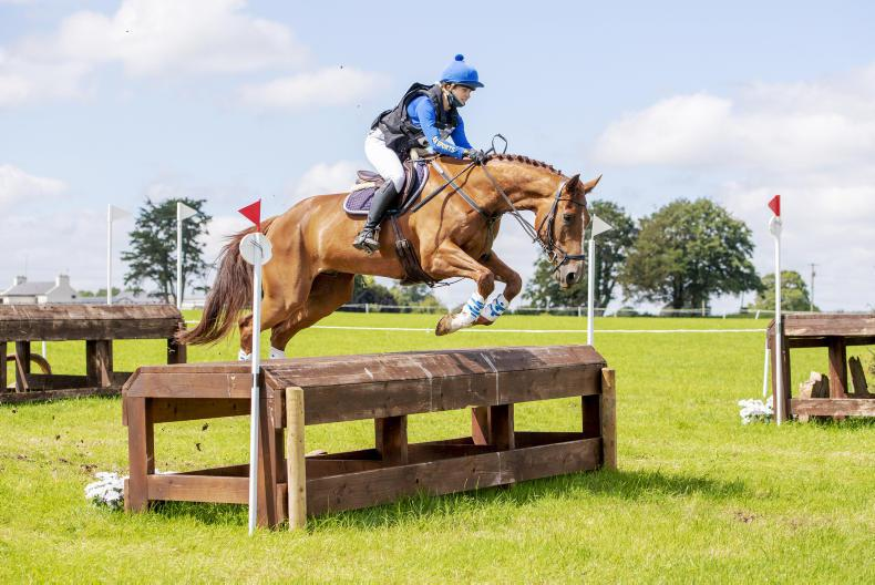 AMATEUR EVENTING: Brotherton has six wins under her belt