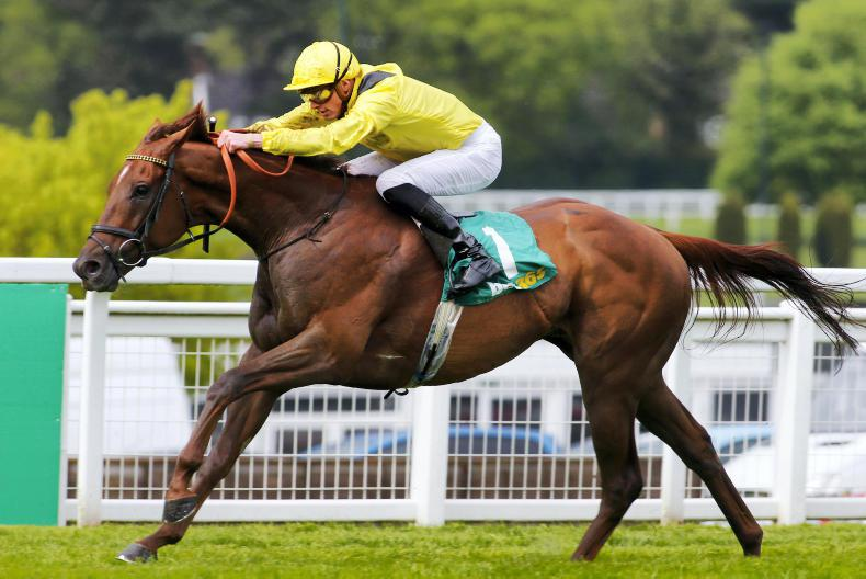 Addeybb to return soon en route to Champion Stakes
