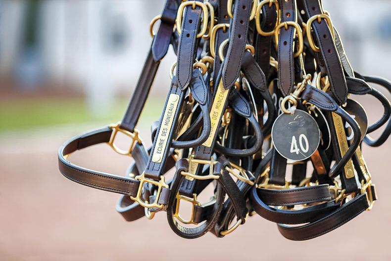 SALES: Abundance of blacktype at Arqana