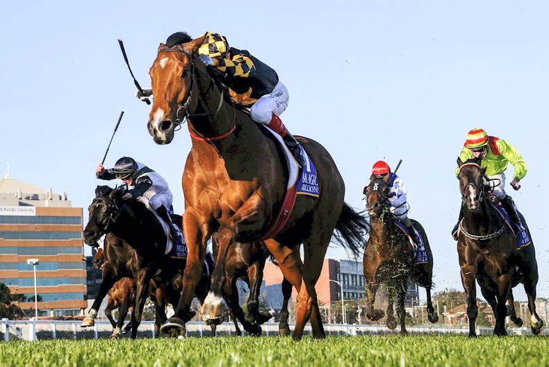 AUSTRALIA: Bargain buy Behemoth enters the big time