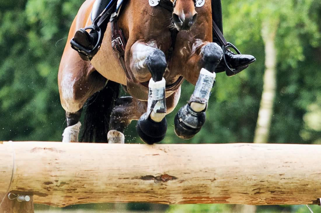 Eventing supporters to be quizzed