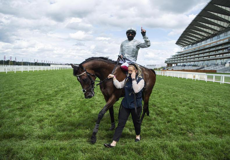 Gosden confirms Champion Stakes intent for Mishriff