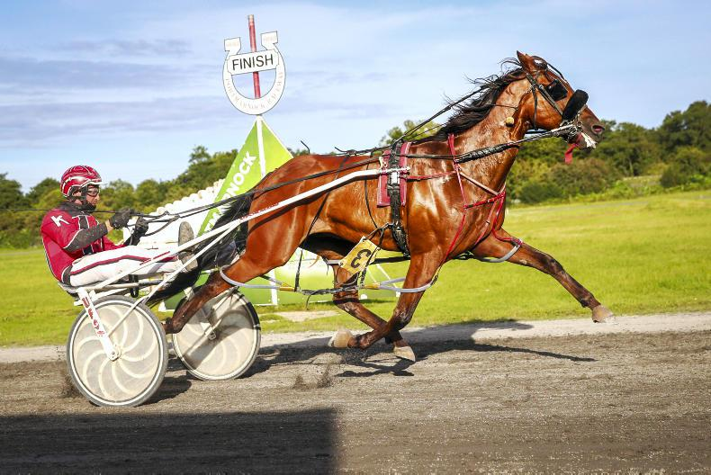 HARNESS RACING: Stakes sizzles in a Kane treble