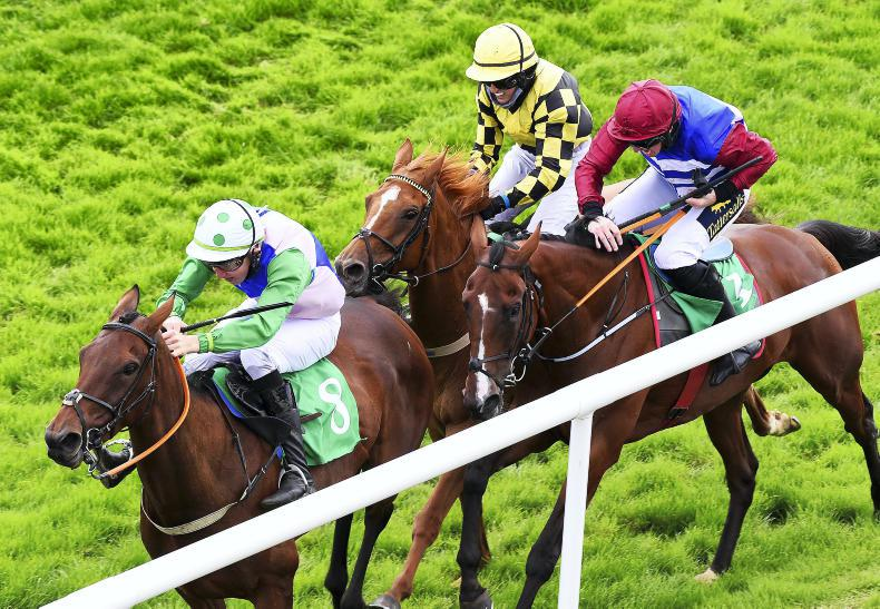 DOWNPATRICK MONDAY: Taaffe takes the honours with first winner