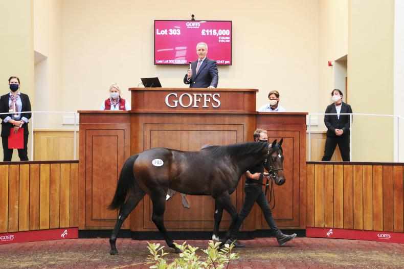 SALES: Goffs UK posts 84% clearance rate at Europe's first yearling sale