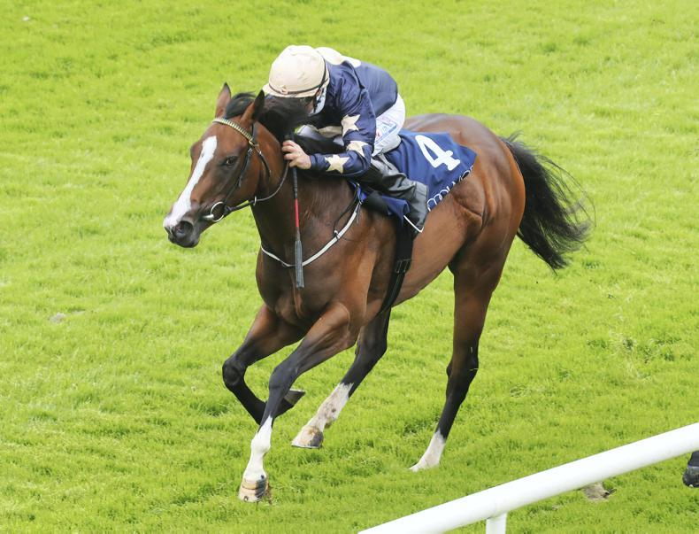 Champers Elysees continues upward curve at Gowran
