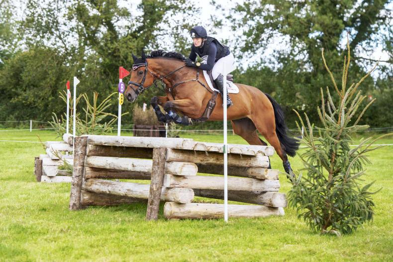 BALLINDENISK INTERNATIONAL: Busy Smith lands win with Mike Of Mourne