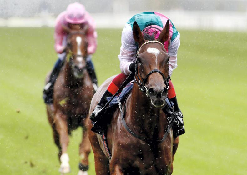 Enable to face six in September Stakes