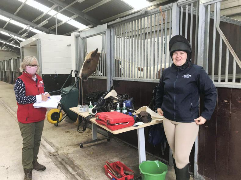 HORSE SENSE: CAFRE equine apprentice can 'earn and learn' by taking BHS exams