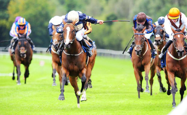 GOWRAN PARK WEDNESDAY: Champers Elysees gets McCullagh back in business