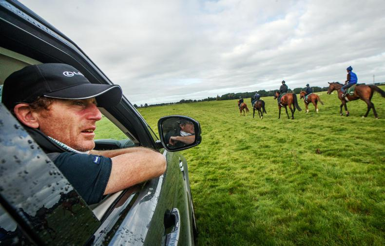 ICW TALKING TRAINER: Johnny Murtagh - No lunches, just horses this year