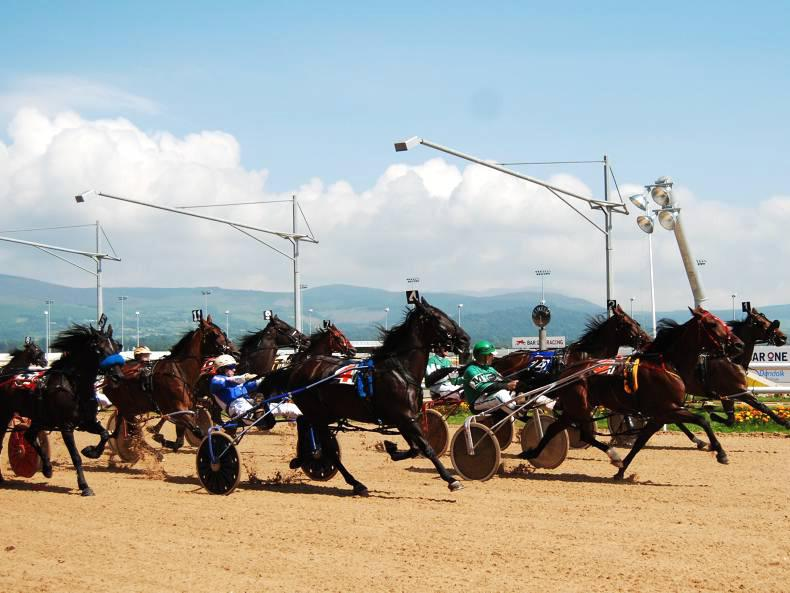 European recognition for Irish Harness Racing Association