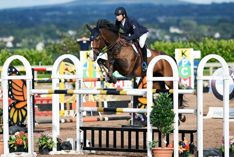 SHOW JUMPING: Flamenco flies high for Gallagher