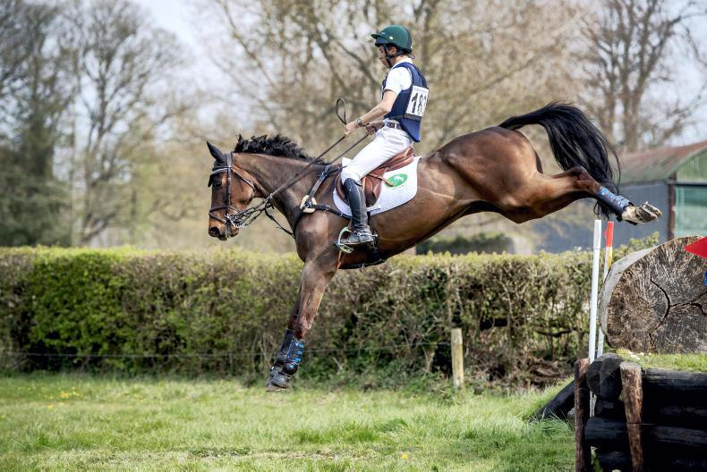 SHOW JUMPING: Cappog Tomy does it for Daniels