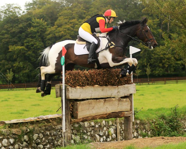 EVENTING: Minty Imp delivers for thrilled Houston