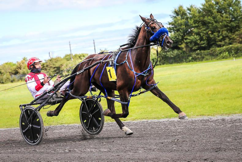 HARNESS RACING: McAleers finds top gears