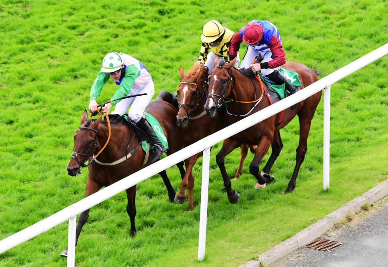 RYAN MCELLIGOTT: Downpatrick enquiry highlights interference inconsistency again