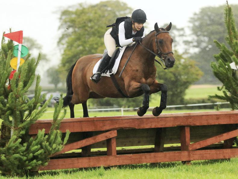 MARGIE McLOONE: Wilson on cross-country watch