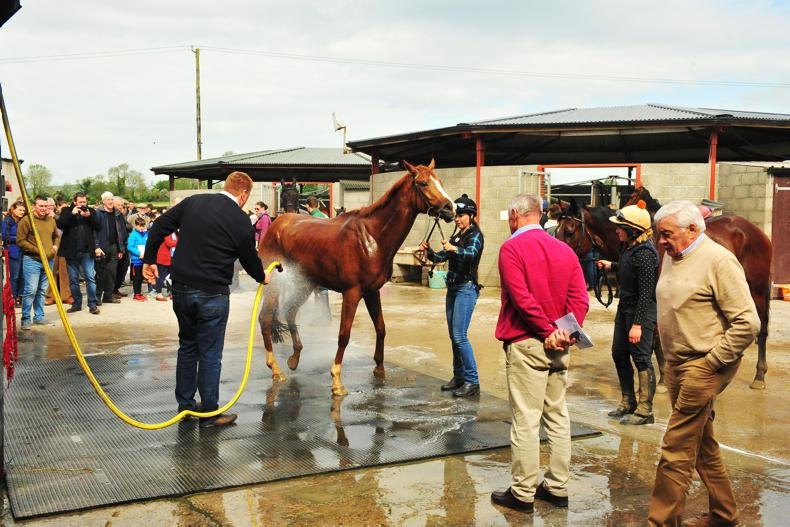 RACE BEHIND THE SCENES: Who are the participating trainers?